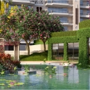 DLF Camellias - Waterbody