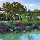 DLF Camellias - Waterbody 02